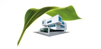 Natürlicher Schutz vor Algen und Pilzen an der Fassade